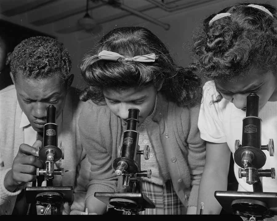 Daytona Beach, Fla., February 1943, students using microscopes at Bethune-Cookman College