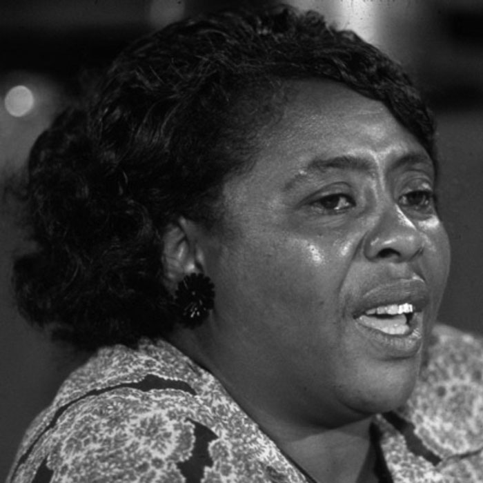 Fannie Lou Hamer, Civil Rights Leader: A Biography |Fannie Lou Hamer
