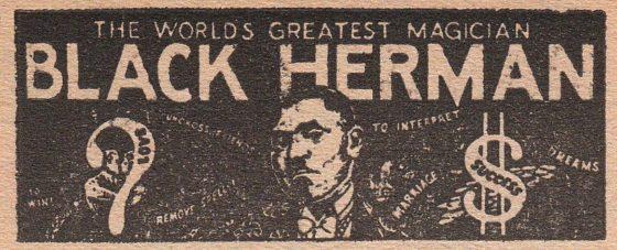 black herman head